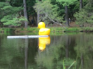 A giant rubber ducky! Also at the Bakwin garden - it is a laugh out loud sight amidst the very classy garden. Very fun.