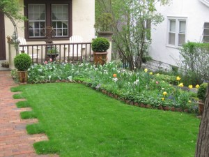 The lawn nicely complements the perennial beds on either side.
