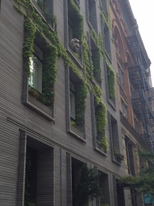 Love this façade in down-town NYC