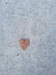 Dried leaf heart