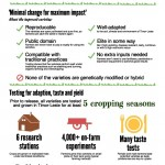 Reducing hunger infographic
