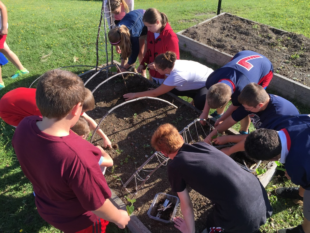 Germination Goes To Middle School Seed To School