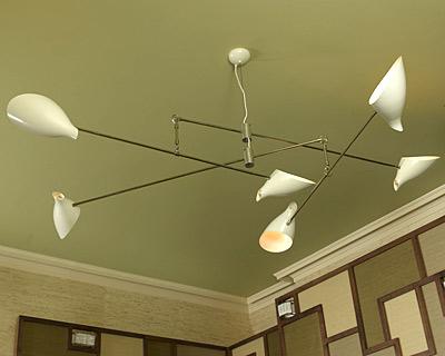 Sho_Lighting_weeds_chandelier.jpg