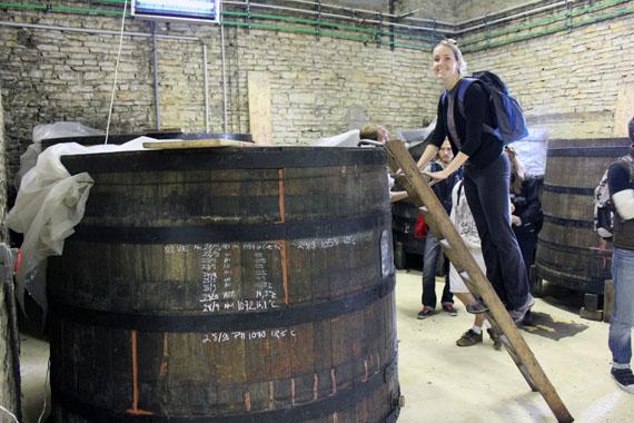 Burgundy-wine-tours