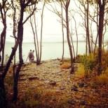 Exploring Lovells Island