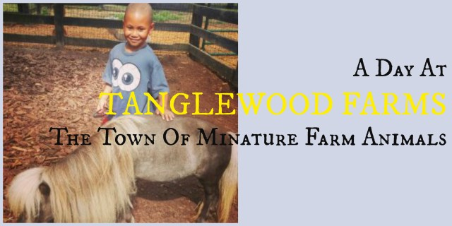 Tanglewood Farms Miniature Animals