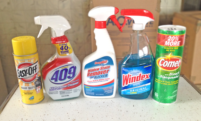 Best Deep Cleaning Products  Seeing Sunshine
