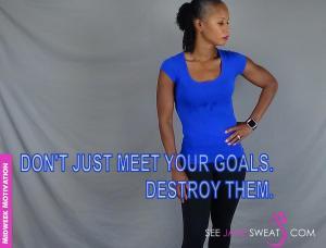 dont just meet your goals destroy them