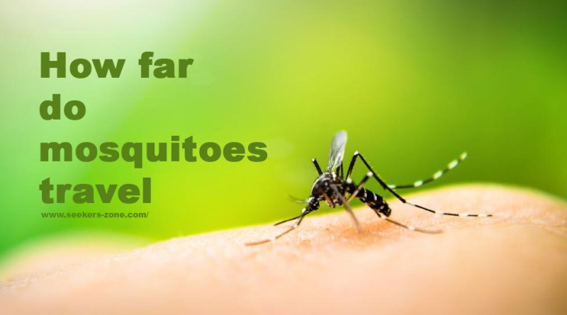 How far do mosquitoes travel