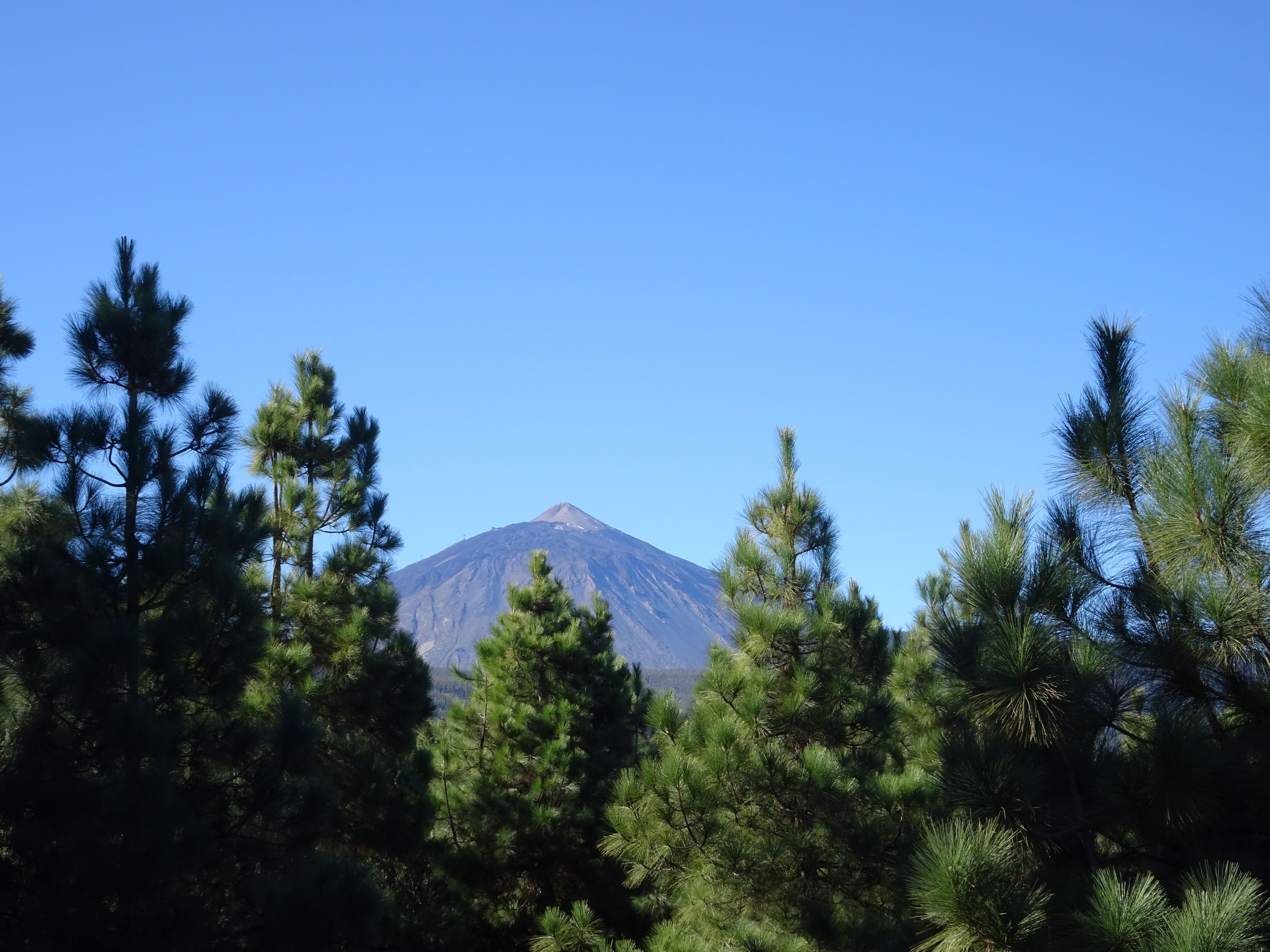 View of Teide from a distance