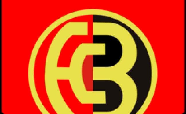 Bern Logo Vectors Free Download