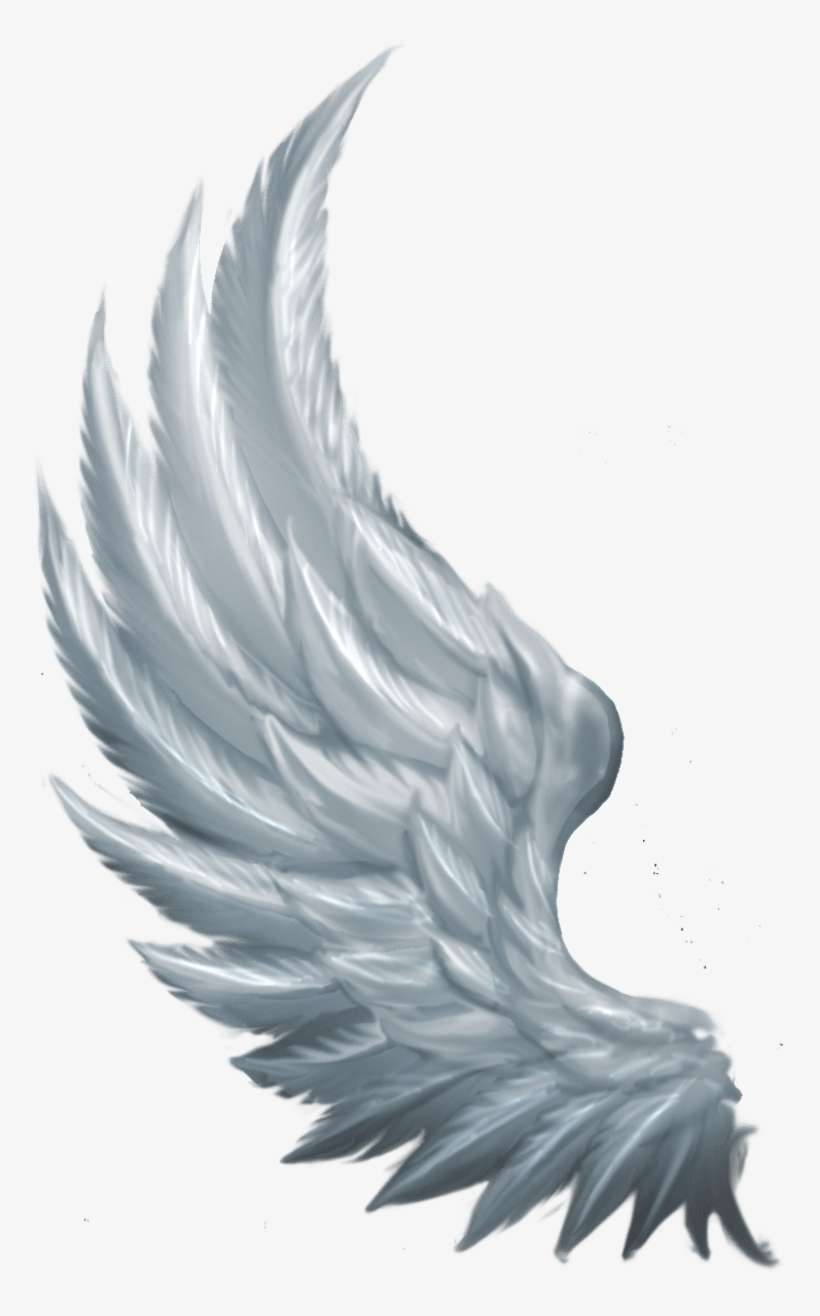 Angel Wings Png Clipart : angel, wings, clipart, Angel, Wings, Image, Transparent, Download, SeekPNG
