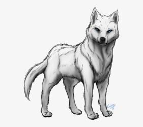 Anime Arctic Wolf Girl