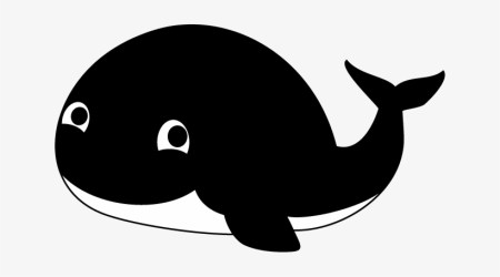 Blue Whale Clipart Orca Killer Whales Clipart PNG Image Transparent PNG Free Download on SeekPNG