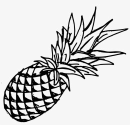 Png Transparent Onlygfx Com Free Download Transparent Pineapple Drawing PNG Image Transparent PNG Free Download on SeekPNG
