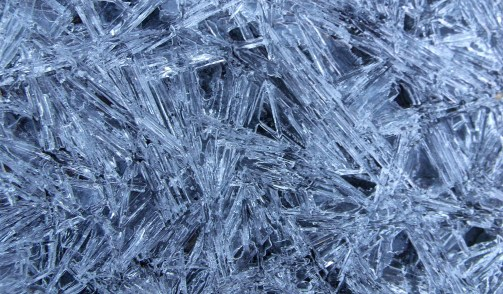 Ice crystals close-up