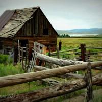 Scofield Horse Barn