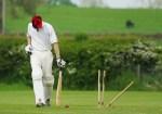 क्रिकेट में कितने खिलाड़ी होते हैं-Cricket mein kitne khiladi hote Hain .