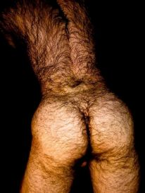 Hairy Butt Gay Men Amateur Sex SeeMyBF