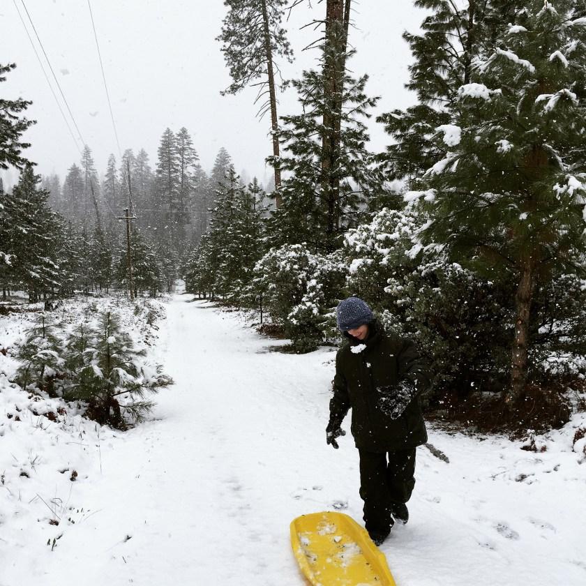 yosemite sledding
