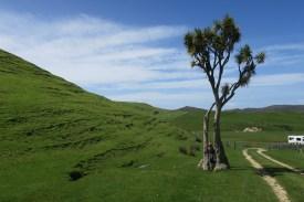 Bizarre Landschaft am Cape Farewell