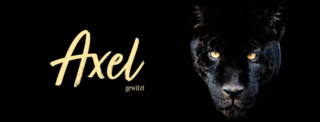 axel-gewitzt-titelbild