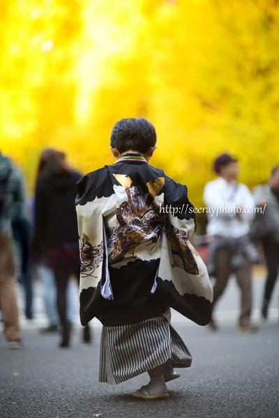 東京・明治神宮&イチョウ並木で七五三ロケーション写真撮影♪