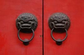 Lions Head Close Up Door