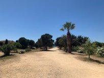 2019_summer_0515_Cyprus_beach (8)