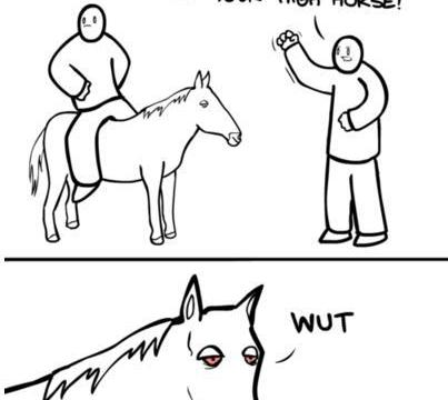 When your horse is High