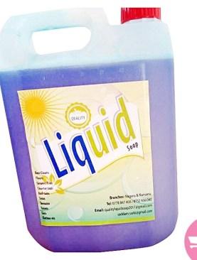 5 Litre Liquid Soap - Blue