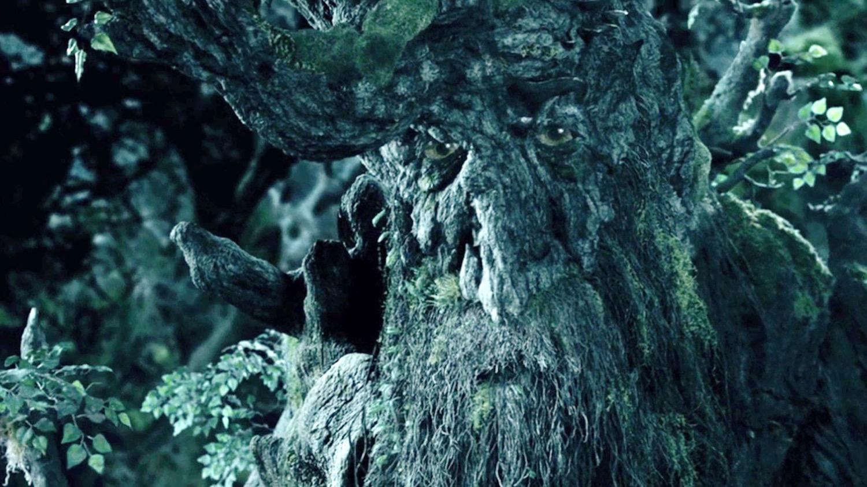 картинки деревьев из властелина колец достопримечательности