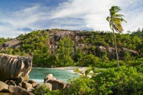 Die Seychellen haben viel Grün zu bieten. Das Vallee de Mai, ein Regenwald-Tal im Landesinneren, ist UNESCO Welt-Kulturerbe.