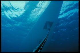 """Da staunt der Fisch und der Fachmann wundert sich. Blick unter die ankernde """"Wallygator 2"""". © Wally Yachts"""