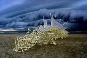 Mit Wind angetriebene Strandbiester vor dramatischem Endzeithimmel © jansen