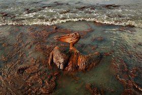 Umweltschutz, Ölbohrung
