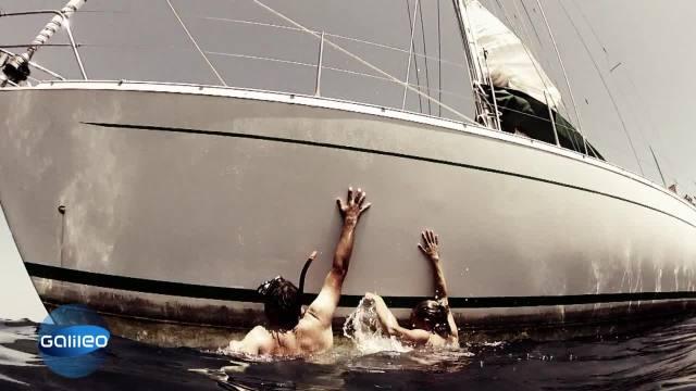 Alptraum aller Segler: Das Mensch ist willig, aber die Bordwände zu glatt © galileo