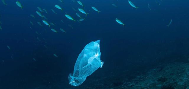 Plastik, Müll, Ozeane