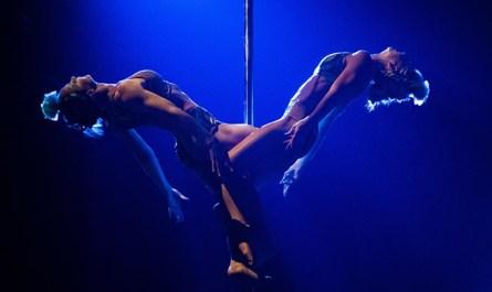 В Китае из-за короновируса отменили часть представлений Cirque du Soleil