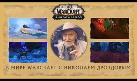 «В мире Warcraft». Николай Дроздов рассказал о дополнении Shadowlands для WoW [ВИДЕО]