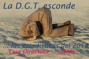 Avestruz DGT copia