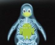 ¿Como funciona el Sandbox Linux en Android?