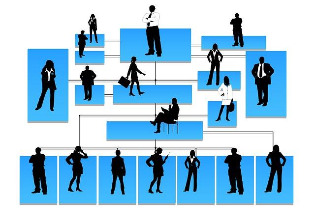 Organización de una empresa