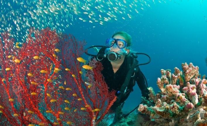 seguro viagem Maldivas mergulho
