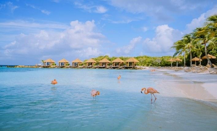 praia seguro viagem Aruba