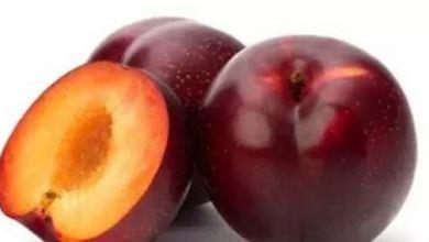 Photo of خبيرة التغذية تقدم 11 فائدة لتناول البرقوق
