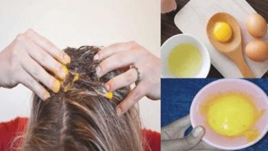 Photo of ماذا يحدث عند وضع صفار البيض على الشعر؟