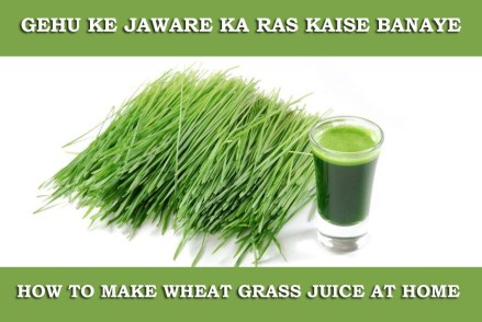 Gehu ke Jaware ka Ras, Wheatgrass Juice in Hindi