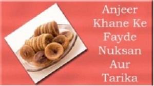 Anjeer Benefits in Hindi