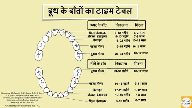 teething chart.001